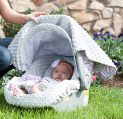Carseat Canopy Whole Caboodle - Mikayla