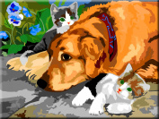 PAINT BY NUMBERS ANIMALS - INTERHOME