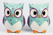Novelty Cutie Owl Salt and Pepper Shakers Set (Turquoise), Height