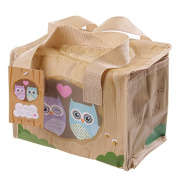 Love Owl Woven Lunch Cool Bag