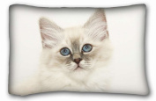 Custom Cotton & Polyester Soft ( Animals kitty fluffys face light ) Standard Size Pillowcase for Hair & Facial Beauty Size 50cm x 80cm suitable for X-Long Twin-bed PC-Purple-33055