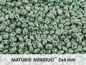 10gr Czech Two Hole Seed Beads MiniDuo 2x4 mm Chalk Green Lustre