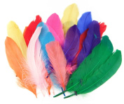 ALL in ONE Mixed Colour Natural Feather for Arts and Crafts