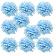 WYZworks Set of 10 - BABY BLUE 25cm - (10 Pack) Tissue Pom Poms Flower Party Decorations for Weddings, Birthday, Bridal, Baby Showers, Nursery, Décor