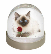 Ragdoll Kitten Cat with Red Rose Snow Dome Globe Waterball Gift