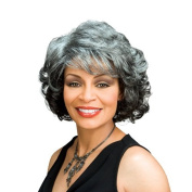 Foxy Silver Synthetic Wig - Barbara-F1B30