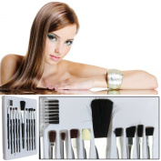 Make Up Brushes Set 10 Piece Assorted Size Cosmetics Application Easy To Hold & Use DIY