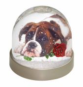 Boxer Dog with Red Rose Snow Dome Globe Waterball Gift