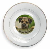 "Border Terrier Puppy Dog ""Yours Forever..."" Gold Leaf Rim Plate n Gift Box"