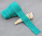 10 Yards Teal Blue 2.5cm Elastic Lace Stretch Lace Elastic Lace Trim Elastic Headband Bridal Garter Baby Hairbow EL035