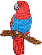 Red Parrots psittacines Bird Wild Animal Kid Baby Jacket Polo T shirt Patch Sew Iron on Embroidered Badge Costume