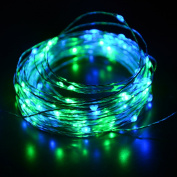 HAHOME 10m 100 LEDs USB Starry String Lights with Power Adapter for Wedding Christmas Party Decoration Blue+Green