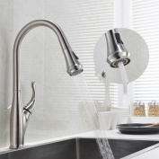 GICASA Single Handle Brushed Steel Pull Down Kitchen Sink Faucet,swivel Spray Kitchen Faucets