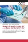 Anatomia y Relaciones del Conducto Dentario Inferior [Spanish]
