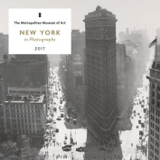 New York in Photographs 2017 Mini Wall Calendar