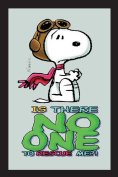 Empire 551955 Printed Mirror with Plastic Frame with Wood Effect Featuring Peanuts Baron Snoopy 20 x 30 cm