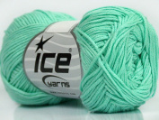 Lot of 8 Skeins ICE YARNS Cotton Bamboo Mint Green