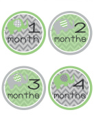 Green Elephant Baby Belly Stickers