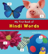 Hindi Words (A+ Books [MUL]