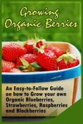 Growing Organic Berries
