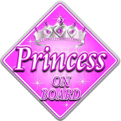 PINK & SILVER PRINCESS Baby on Board Car Window Sign