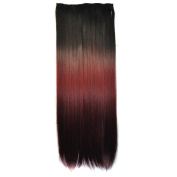 Abwin Black to Burgundy to Dark Red Coloured Clip in Hair Extensions