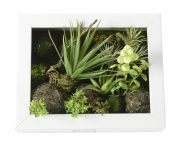 3D Artificial Flowers Wall Hanger Succulent Plants Aloe Green Leaves Grass Moss Stone with Imitation Wood Photo Frame Shape Vase Home Decoration, White Frame, 20cm *25cm