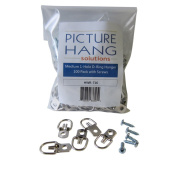 1000 Pack D-Ring Picture Hanger Heavy Duty with Screws