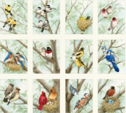 Beautiful Birds Panel from Elizabeth's Studios, Realistic Illustrations by Tracey Lizotte