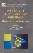 Nanosized Tubular Clay Minerals