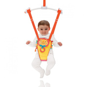 Bounce and Play Door Baby Bouncer