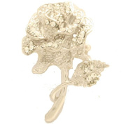 Cyllene Fantaisie - Flower Costume Brooch - White