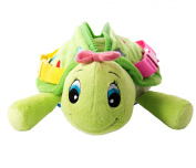 Buckle Toy Belle Turtle