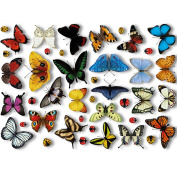 25 Realistic Butterflies & 17 Ladybird Window Clings by Articlings® - Non-adhesive Stickers Quickly Decorate and Brighten your Windows