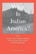 What Is Italian America?