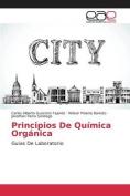 Principios de Quimica Organica [Spanish]