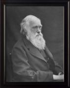 Charles Darwin 8x10 Framed Photo