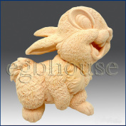 Funny Bunny - Detail of High Relief Sculpture - Silicone Soap/polymer/clay/cold Porcelain Mould