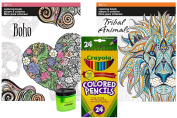 . Coloured Pencils (24), Prismacolor Pencil Sharpener, and 2 Adult Colouring Books