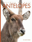 Antelopes (Amazing Animals)