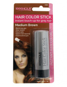 1000HR Touch Up Hail Colour Stick - Medium Brown