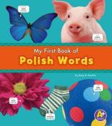 Polish Words (A+ Books [MUL]