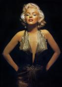 Marilyn Monroe 8x10 Photo