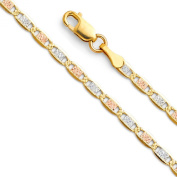 14k Tri Colour Gold 2.5mm Valentino Solid Chain Bracelet with Lobster Claw Clasp - 7""