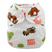 LilBit Thanksgiving Day Prints Reusable Baby Cloth Nappies With 2 Inserts