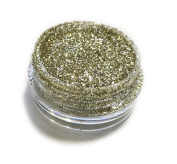 Glamour Champagne Sparkle Eye Shadow Loose Glitter Dust Body Face Nail Art Party Shimmer Make-Up