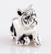 Bull Dog with Bone - Women's Charm - for Pandora Jewellery or Similar - 100% 925 Sterling Silver