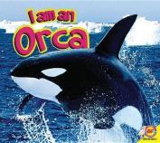 I Am a Orca (I Am)