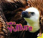I Am a Vulture (I Am)