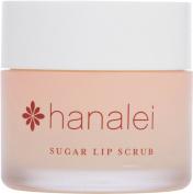 Sugar Lip Scrub by Hanalei Beauty Company (Cruelty-free) Net Weight 22g